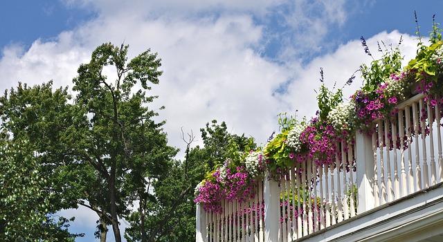 איך ליצור גינה נחמדה במרפסת קטנה בתקציב מצומם